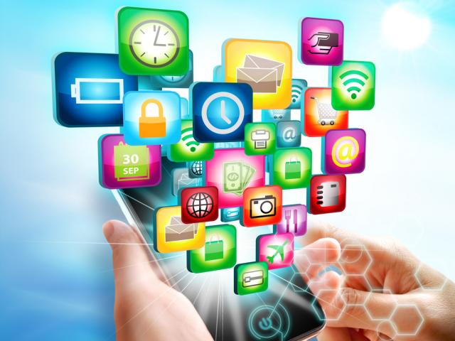 모바일 애플리케이션 관리 솔루션 시장